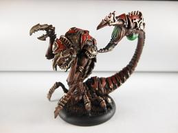 Aradus Sentinel 1